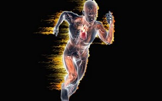 Iodo X Metabolismo