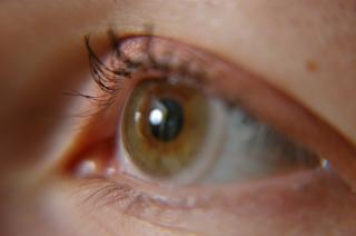 Astaxantina ajuda na visão